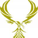 Team Jorvik phoenix
